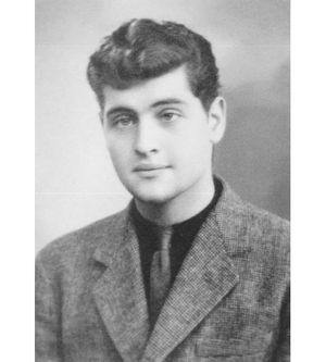 Молодой Джо Дассен