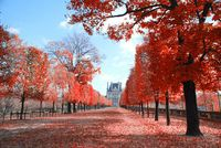 Все об октябрьской погоде в Париже